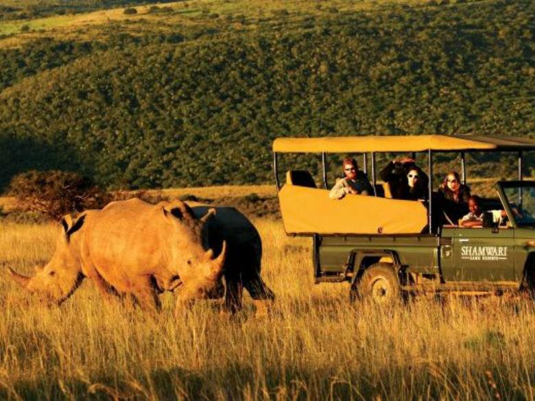Safari Clássico na África do Sul (desde 1312€ por pessoa)