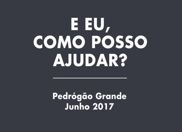 PedrograoGrande_ARTIGO_730x529